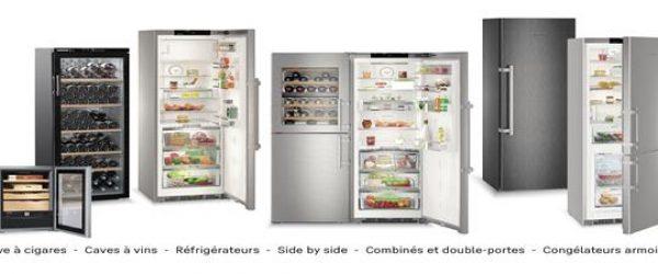 sav-liebherr-depannage-reparation-frigo-refrigerateur-congelateur-cave-a-vin-paris